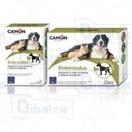 Camon enterosalus aliment complémentaire pour problèmes intestinaux chien et chat