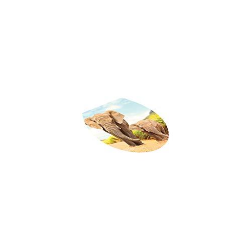 Newin Star Diseño de Dibujos Animados Asientos para inodoros Pegatinas de Pared Desmontable de baño Decoración Decal PVC Mural Decoración Hummingbird Elefante Pegatinas Asientos de Inodoro