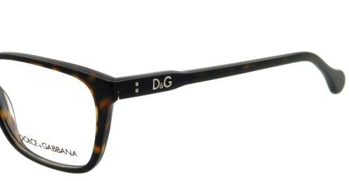 D&G DG 1238 502: Tortoise