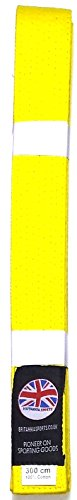 Arti Marziali Karate Judo Jitsu Taekwondo Cintura Rosso Viola Arancione Blu Marrone Giallo, Yellow, 200cm