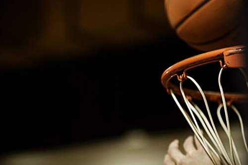 Spalding Erwachsene NBA Platinum Portable (68-564CN) Korbanlagen, transparent, 54