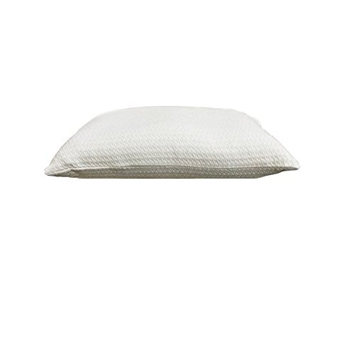 Kanyoga Cotton Buckwheat Hull Filled Relaxing Pillow (46 x 30 CM) White, Set Of 1