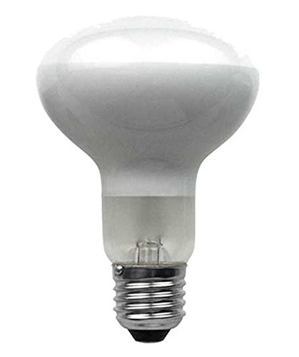 10-pack-eveready-48w-60w-r80-es-e27-edison-screw-halogen-750-lumens-warm-white-energy-saver-light-bu