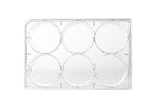 neoLab C-8110 Multitestplatten 6 Well flach, 34,7 mm Durchmesser, 9,15 cm², 16 mL (100-er Pack)
