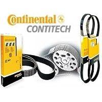 Contitech Courroie multipistes le numéro de la pièce :  4PK800