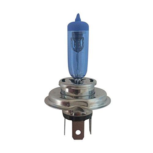 Auto led lampe, erthome 2 stücke 12 V Xenon H4 100 Watt 6500 Karat Gas Halogen Scheinwerfer Weißes Licht Lampen (Watt Led-licht-lampe 100)