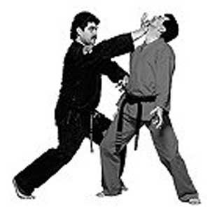 century-master-tabatabais-american-kenpo-karate-dvd-titles