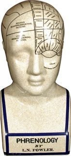 "12"" Ceramic Phrenology Head"