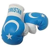 Mini Guantes de boxeo Turkistan