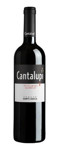 Conti zecca cantalupi negramaro 2016-6 bottliglie da 750 ml
