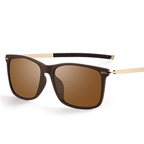 SUNGLASSES Sonnenbrillen Mann, herumfahren Brille Wrap Wayfarer Harz Mens Day Night polarisierte Sonnenbrille für Männer (Color : D)