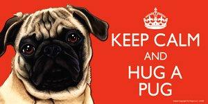 MOPS/Mopps Fawn Hund Geschenk–'Keep Calm' Große Bunte 10,2x 20,3cm Magnet–Hohe Qualität Flexibler Magnet für Innen- oder Außeneinsatz für Ihr Kühlschrank, Auto, Caravan oder Verwendung auf jeder flachen Metall Oberfläche–wasserfest und UV-beständig.