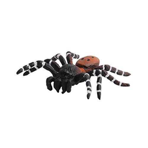 (Togel Educational Science Toy Simulated Spider Model Toy for Kids Children Partei Spielzeug Geschenk Halloween Babyspielzeug Kürbis Kinderspielzeug Holzspielzeug Halloween Plastikspielzeug)