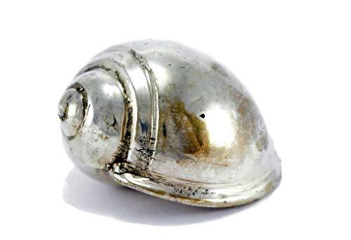 Brillibrum Design Muschel Versilbert Patina-Look Schnecke Aus Metall Massiv Deko Briefbeschwerer Tisch-Dekoration -
