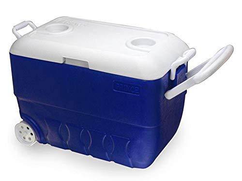 Princeware Plastic Ice Box, 50 Litre, Assorted