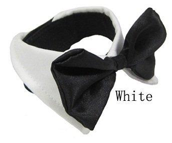 Diamondhead New Dog Bow Tie auf Hemd-Kragen für kleine / mittlere Hunde / Katzen einstellbar (Extra Large, Weiß) (Extra Small Dog Bow Ties)