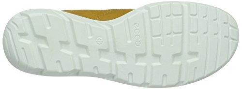 Ecco Calgary, Chaussures Multisport Outdoor Homme Jaune (OAK/OAK59685)