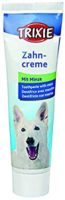 Trixie Mint Toothpaste for Dog, 100 g by Trixie