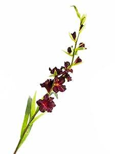 Glaïeul artificiel rouge bourgogne, DELUXE, 115 cm, Ø 1-10 cm - Fleur artificielle / Glaieul en tissu - artplants