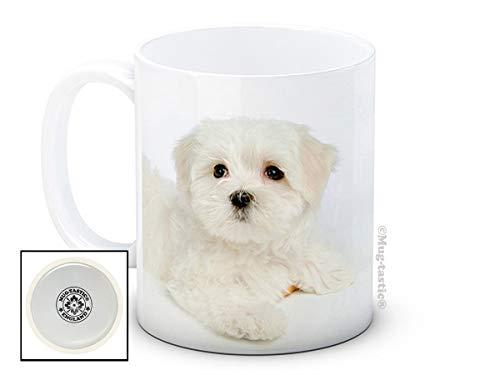 Maltese Terrier Bichon Chien Chiot - De Haute Qualité Tasse À Thé Café