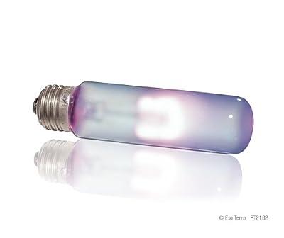 Exo Terra Daytime Heat Lamp Tageslicht-Wärmelampe T10, 25W