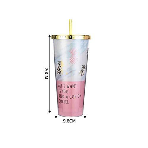 PLDKFB Kaffeetasse Ananas-Becher-Plastikdoppelschicht-Wasser-Flasche mit Stroh-Rosa-Reise-tragbarem Saft-Kaffee-Milch-Schale Drinkware, Art 3 (Glas Flasche Mit Cd-deckel)