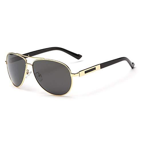 YIWU Die Neue Innenbeschichtung Polarisiertes Licht Sonnenbrillen Herren Coole Sonnenbrillen Ms Fahrer Fahren Gläser (Color : 3)