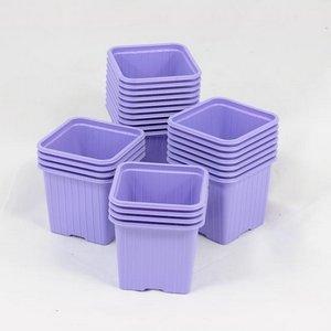 bicchiere-per-semina-8-x-8-x-7-cm-colore-lilla