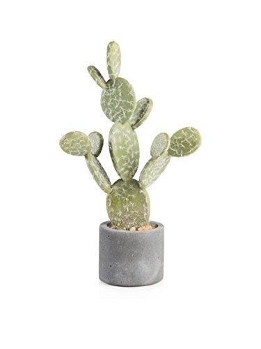 Montemaggi Kaktusfeige Pflanze Harz Vase 23x11x44cm.