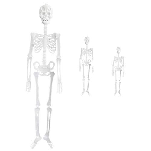 TOYANDONA 3 stücke Halloween leuchtenden Skeleton Kunststoff hängen Skeleton Halloween schädel Skeleton Rahmen wandbehang dekor (20 cm + 30 cm + 90 cm)