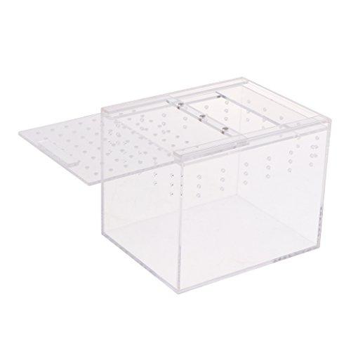 non-brand MagiDeal Acryl Terrarium Reptilien Aufzucht Fütterung Box Transportbox - Typ 2-15x12x12cm
