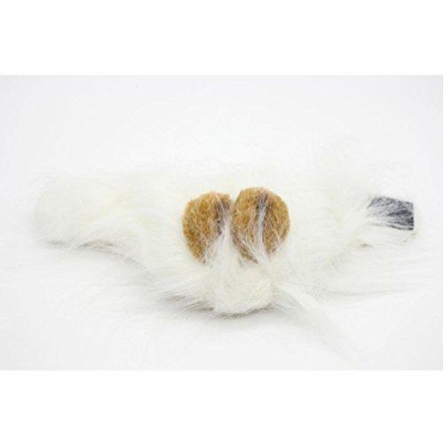 (greatfun Furry Pet Hat Kostüm Löwe Mähne Perücke für Katze Halloween Kleid bis mit Ohren Party)