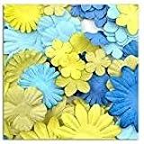 Toga AA26 Lot de 75 Fleurs unies Papier Vert/Bleu 13 x 16 x 0,5 cm
