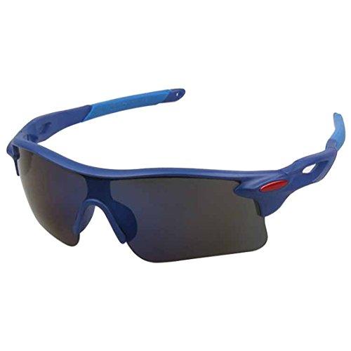 ArcticBlue Lunettes de Soleil - Sport - Cyclisme - Ski - Conduite - Motard - Plage / Mod. Kite Gris Bleu Miroir / Taille Unique Adulte / Protection 100% UV400 FV8Uvt