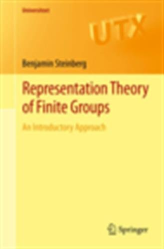 Representation Theory of Finite Groups: An Introductory Approach par Benjamin Steinberg