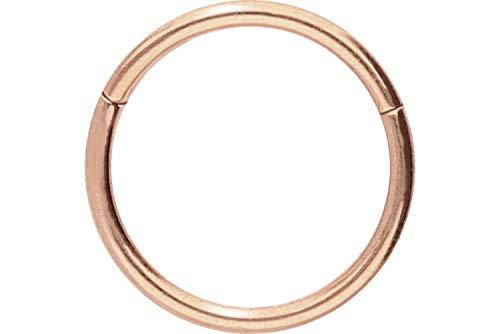 PIERCINGLINE Titan Segmentring Clicker | Piercing ✔ Septum ✔ Tragus ✔ Helix ✔ | Farb & Größenauswahl