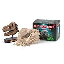 dinosaur-skull-dig-kit