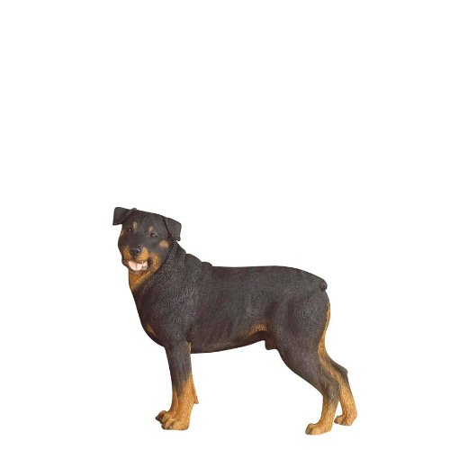Country Artists Rottweiler stehend