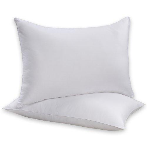 Beautyrest Baumwolle Kissen (Beautyrest Sneeze Less Bettkissen, 2 Stück, Baumwolle, weiß, Queen)