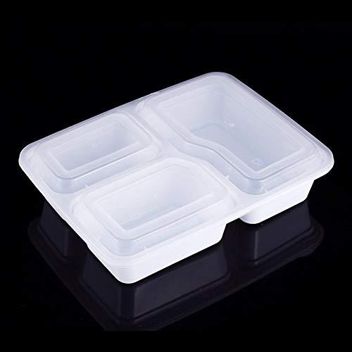 Zyyini Einweg-Lunchbox, 10 Stück, Mikrowellengeschirr, umweltfreundliches Geschirr, geeignet für Restaurants, Familientreffen, M