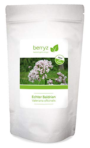 Baldrian hochdosiert als Baldrianwurzel getrocknet | Baldriantee | 100g | Valeriana officinalis L.