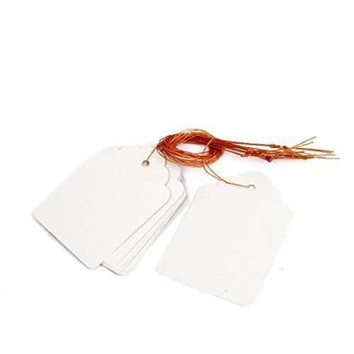 Plastic Graine de plantes Hanging Tag Étiquette Marqueur 70mm x 50mm 10Pcs Blanc