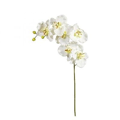 Orchideenstiel 80cm Cre Ws 60076-34 von DPI bei Heizstrahler Onlineshop