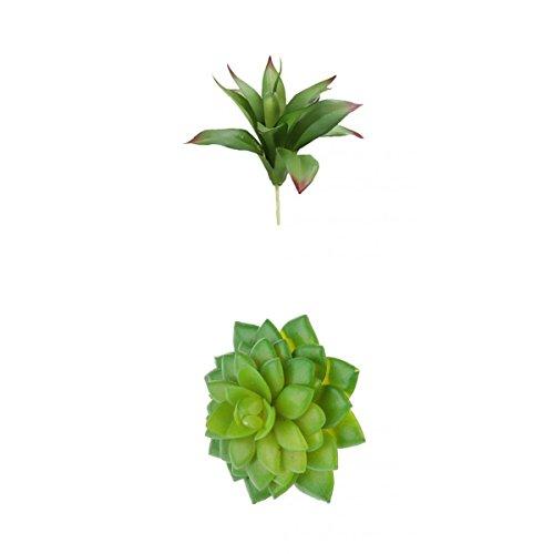 MagiDeal Künstliche Mini Sukkulente Kunstpflanz Pflanzen Blumen Saftiges Alocasia + Agave Pflanzendekor Hochzeit Garten Büro Dekoration