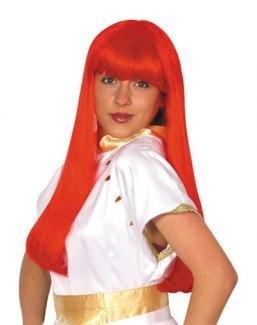 Cher Fancy Dress - Cher 23