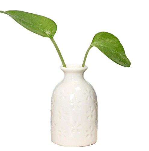 Cdet Floreros decorativos cerámica pequeño jarrón creativo oficina en casa escritorio falso...