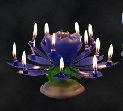 Musik Blumenkerzen blau Alles Gute zum Geburtstag mit Fontäne und Musik Kerzen Tortendeko Hochzeitsfontäne 14 Kerzen mit der bekannten Melodie