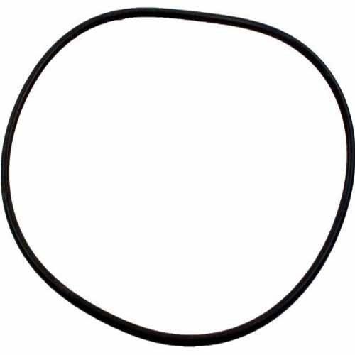 Jandy Zodiac R0555400 Pot coperchio O-Ring