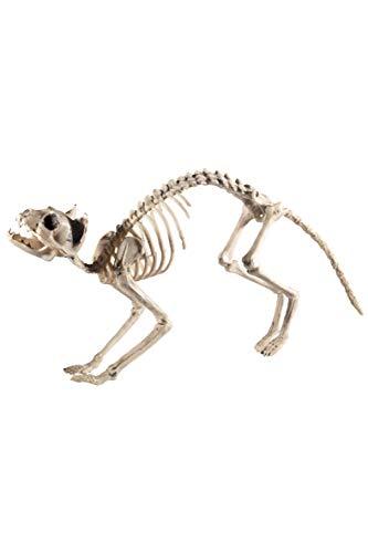 Smiffys Katzen Skelett, 60x12x25cm, 46913 (Schminken Halloween Katze)