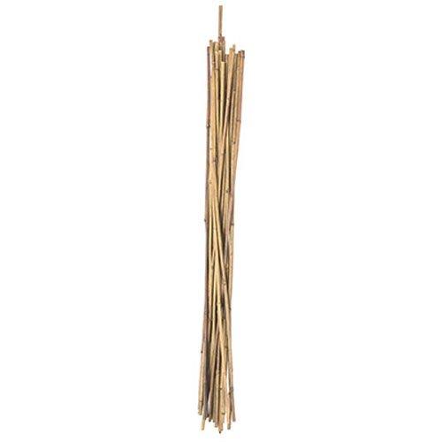 Panacea Products 2 'NAT Piquet de Bambou (Lot de 25)